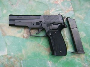 SIG SAUER made by SIGARMS INC. Herndon - VA